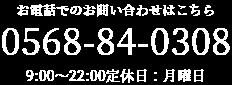 0568840308